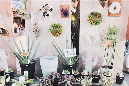 東京蚤の市;壁掛け植物
