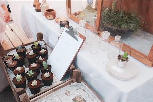 植物のブース(多肉植物)