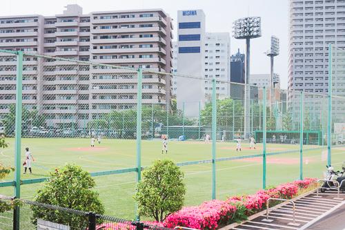 天王洲アイルの野球場