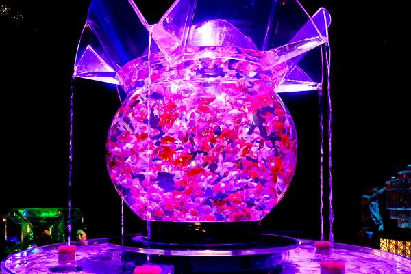 1000匹の金魚が泳ぐ最大級の金魚鉢『花魁』