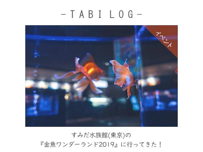 すみだ水族館(東京)の『金魚ワンダーランド2019』に行ってきた!