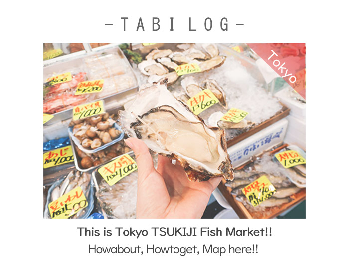 This is Tokyo TSUKIJI Fish Market!! Howabout, Howtoget, Map here!!