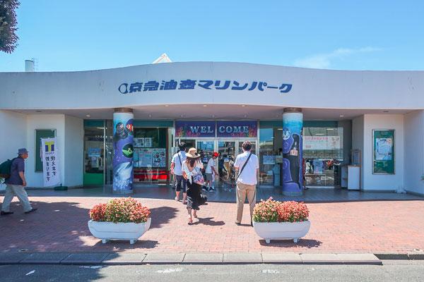 京急油壺マリンパークは三崎港周辺の大きめの水族館!
