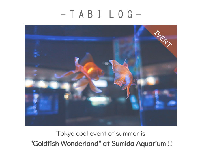 "Tokyo cool event of summer is ""Goldfish Wonderland"" at Sumida Aquarium !!"