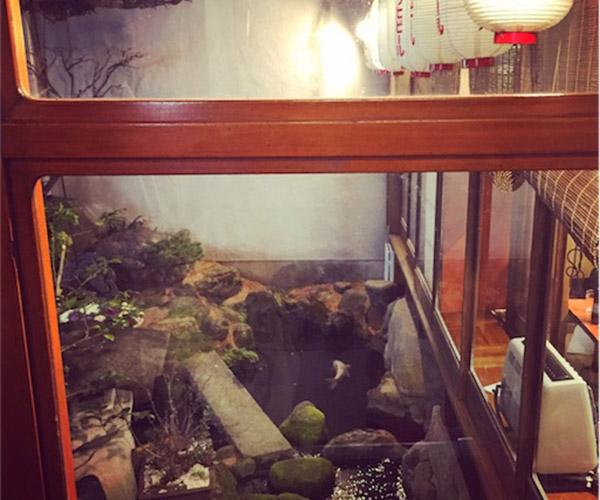 浅草米久本店店内から見たお庭