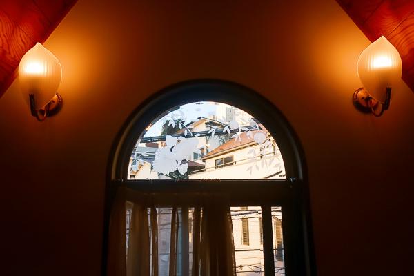 金魚坂土佐金の窓