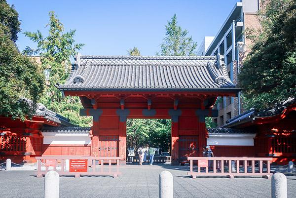 東京大学に潜入!大学内をお散歩&ランチしてきた