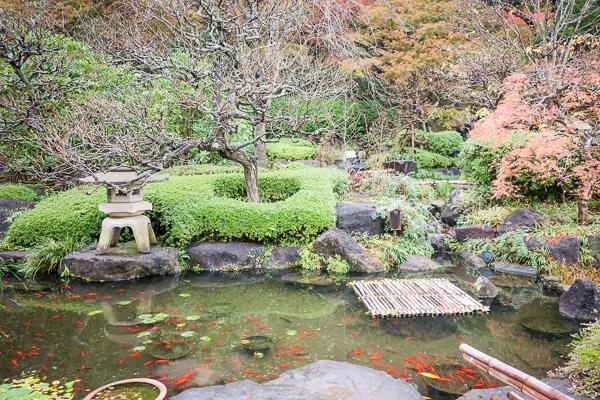 長谷寺の庭と池