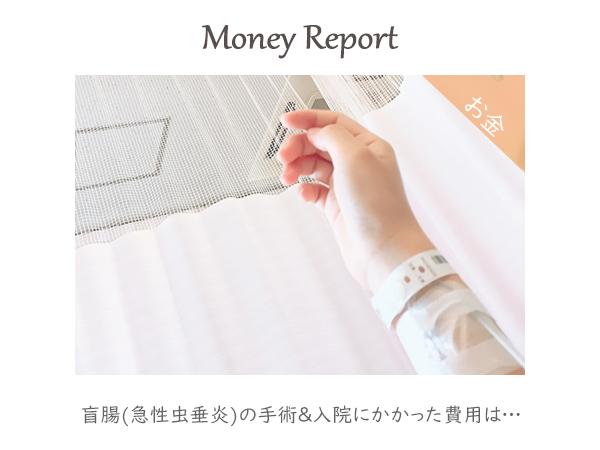 盲腸(急性虫垂炎)の手術&入院にかかった費用は…