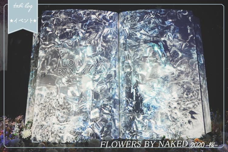 《フラワーズバイネイキッド2020桜》を見てきた!感想・見どころ