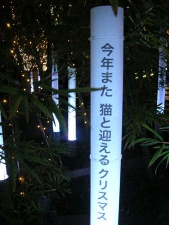f:id:natsutobira:20101216011906j:image
