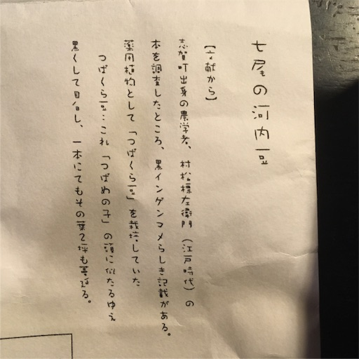 f:id:natsuyono:20180526080453j:image