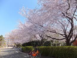 f:id:nattou-san:20170417124824j:plain