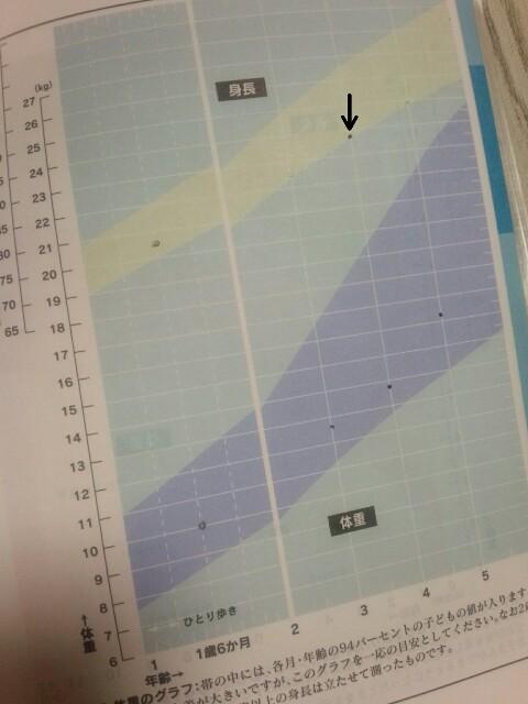 f:id:nattsu-2525-1023:20180406233137j:plain