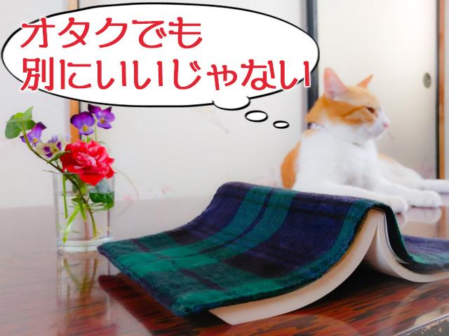 f:id:nattsu_326:20180614193250j:plain