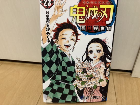 f:id:natukawa-haruto:20210328222936j:plain