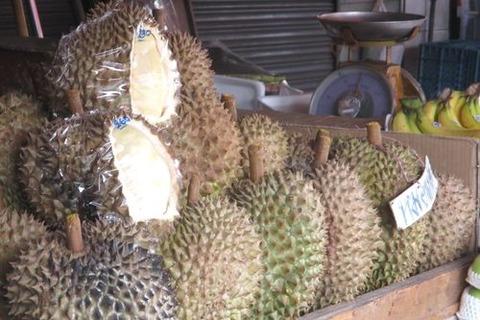 タイのフルーツ 果物の王様ドリアン