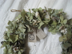 f:id:natural-ivy:20130225001114j:image