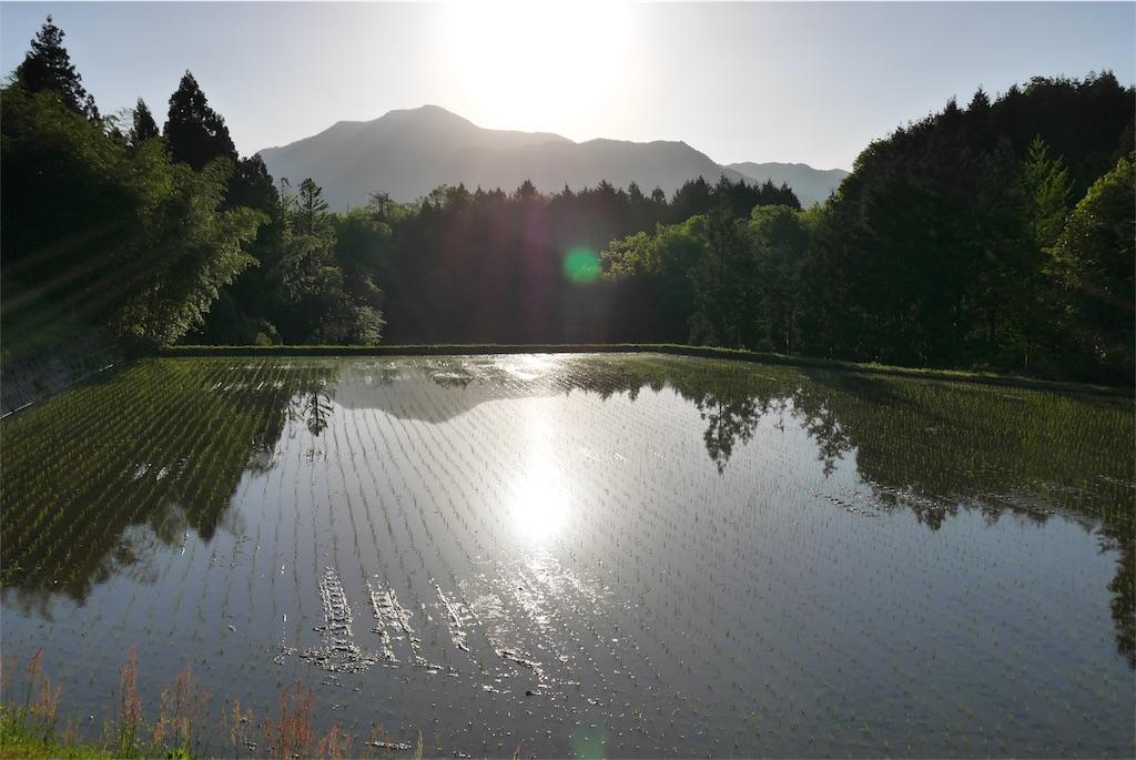 f:id:natural-japub:20170504165221j:image