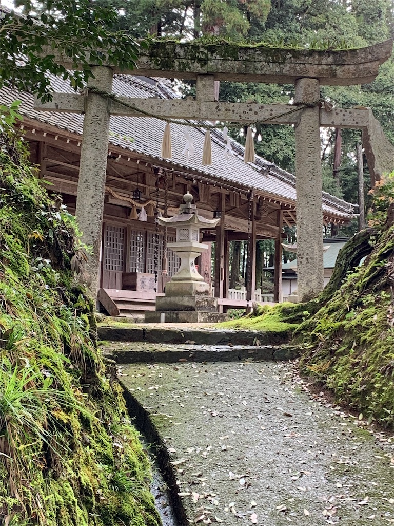 f:id:natural-japub:20190430192741j:image