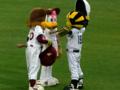 2009-06-20 vs楽天