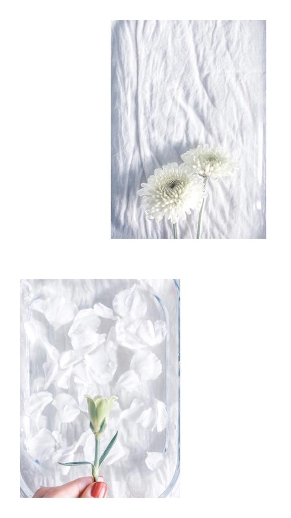f:id:naturalbossa:20181231225818j:image