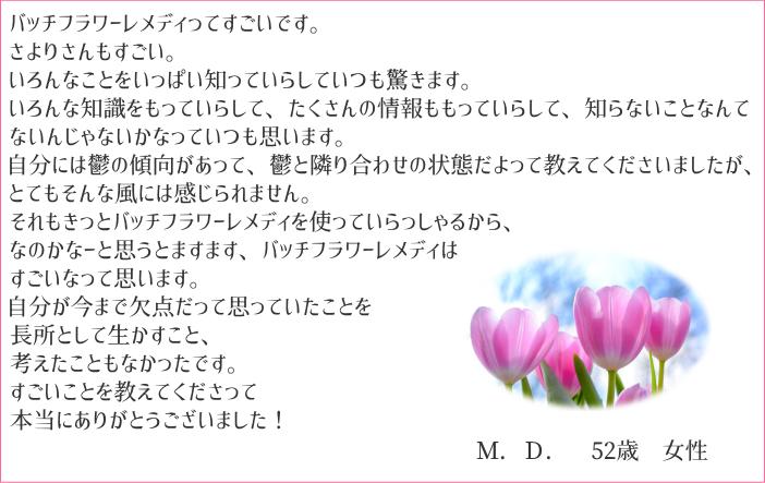 f:id:naturaln:20181214222054p:plain