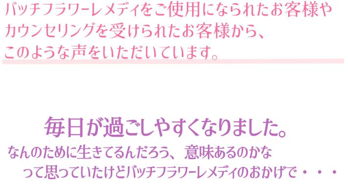 f:id:naturaln:20181222220343p:plain