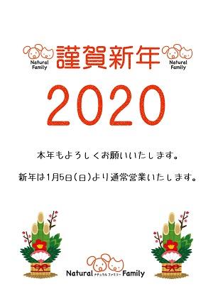 f:id:natyural-family:20200105015642j:plain