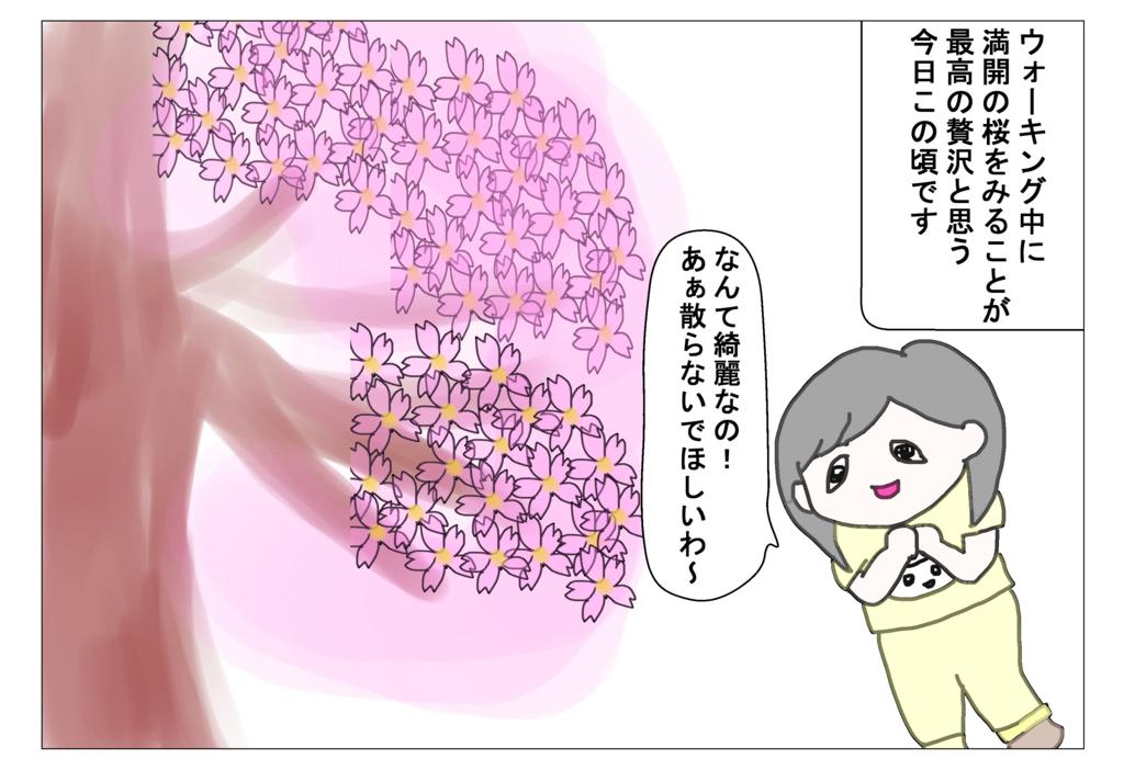 f:id:naushika329:20171125215113j:plain