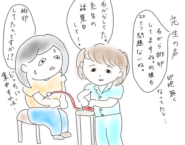 f:id:naushika329:20180906215639j:plain
