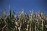 f:id:navi-area26-10:20121109194552j:image