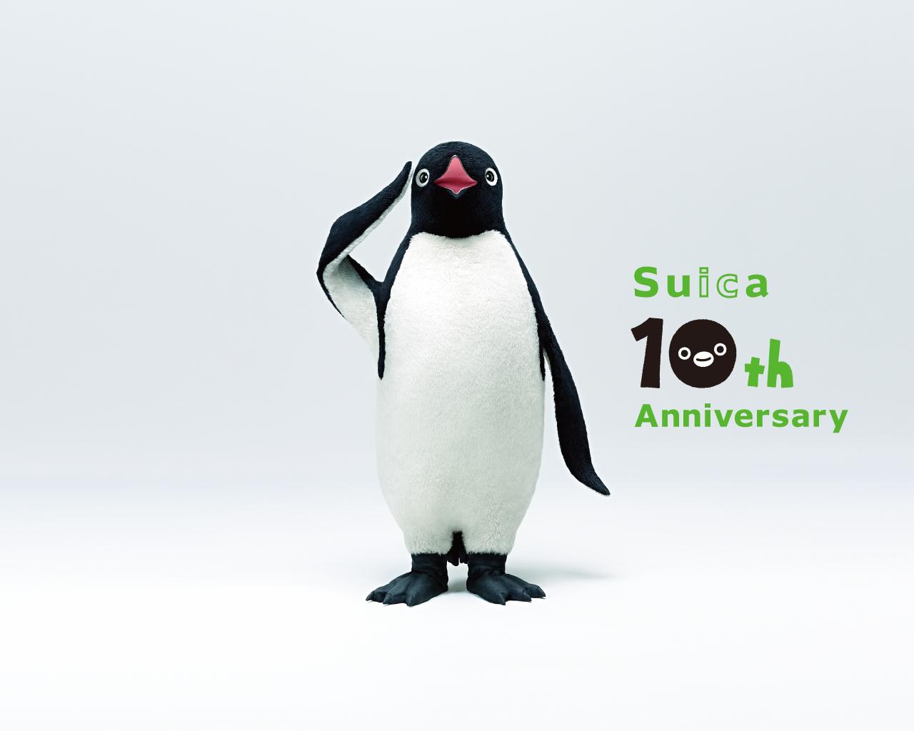 個別 Suicaペンギン Suica10周年記念 の写真 画像 ぺ 関連