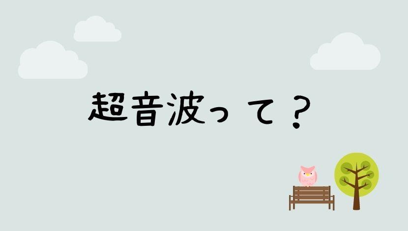 f:id:nayoro_urawa:20200916151038j:plain