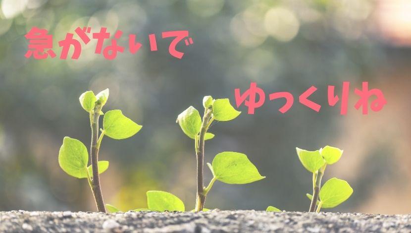 f:id:nayoro_urawa:20200918222217j:plain
