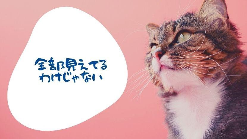 f:id:nayoro_urawa:20201122090603j:plain