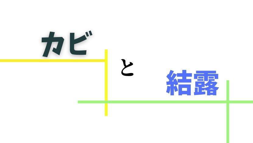 f:id:nayoro_urawa:20210120220618j:plain