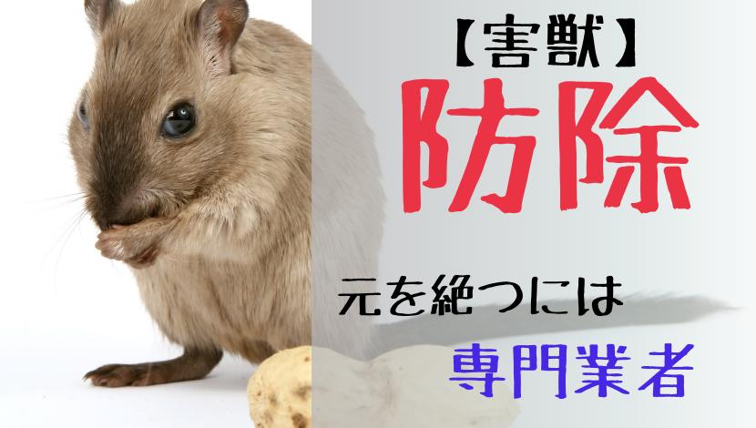 f:id:nayoro_urawa:20210517212620p:plain