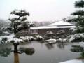 日本庭園19