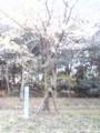 大阪南港野鳥園03