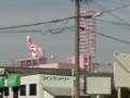 ビーンズピンクゴリラ店