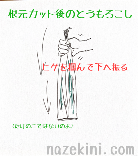 f:id:nazekini:20200626125034p:plain