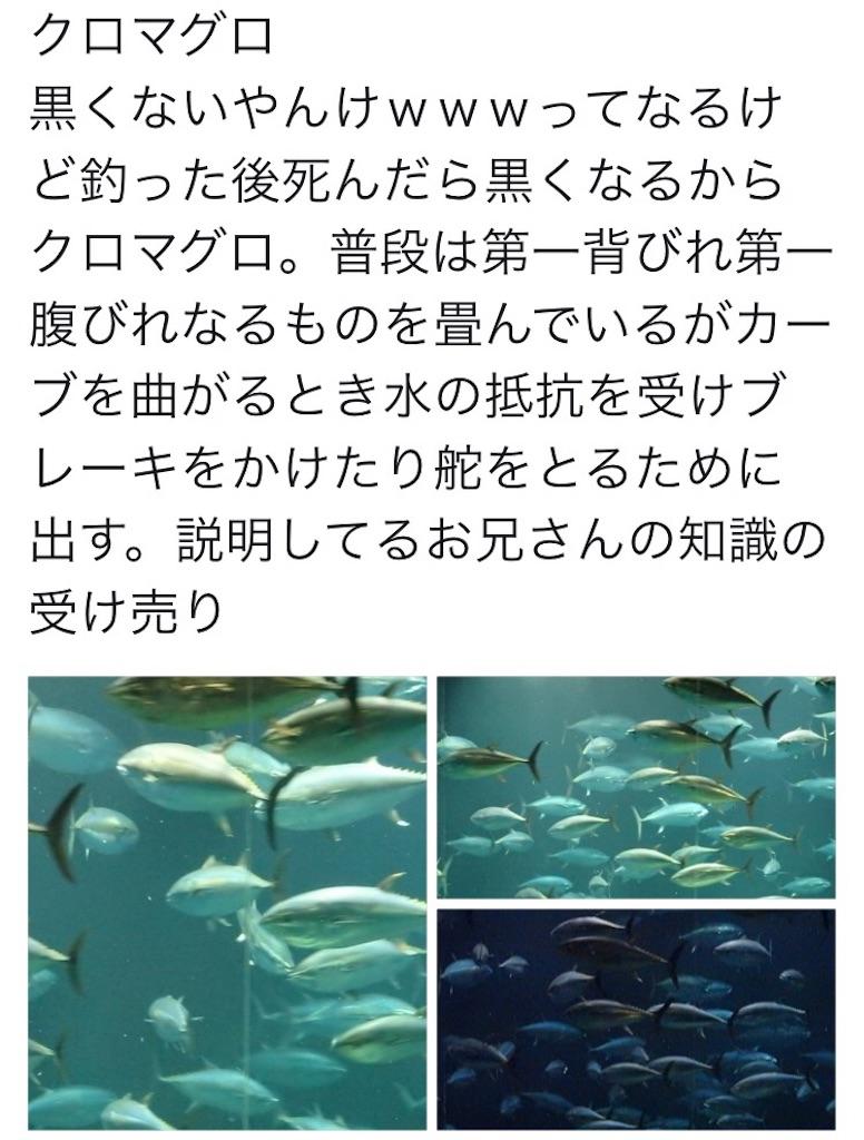 f:id:nazoko_dayo:20161128201008j:image