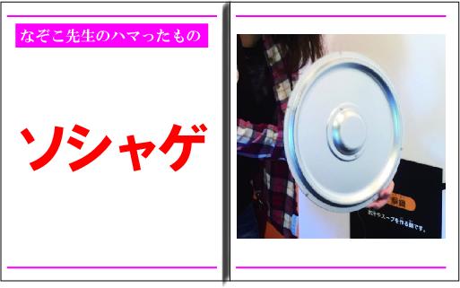 f:id:nazoko_dayo:20170125185054j:plain