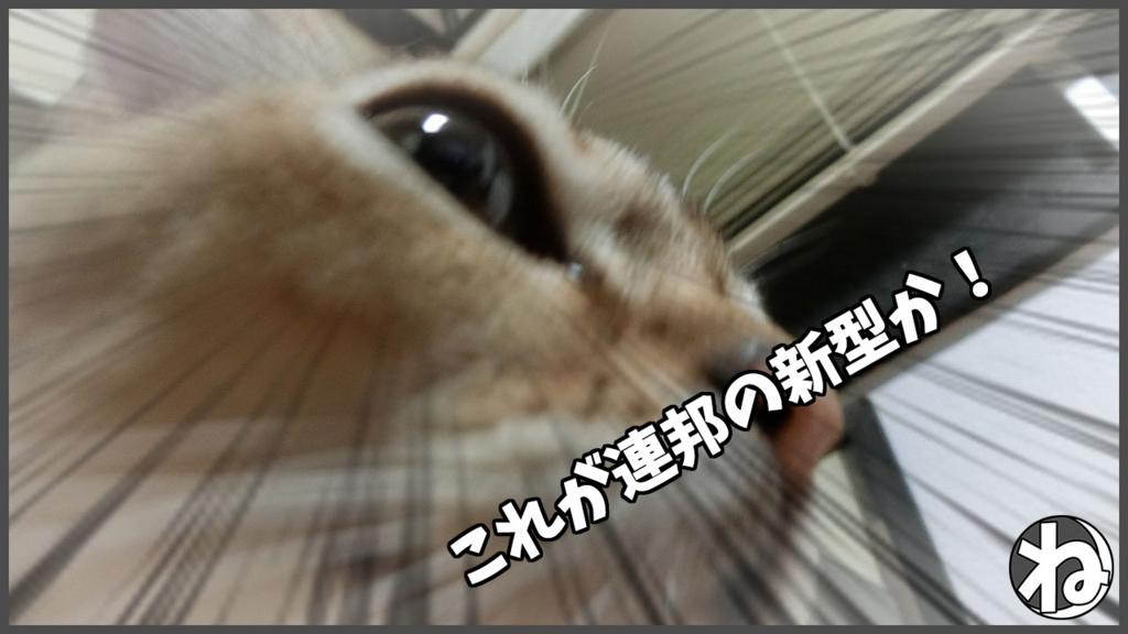 f:id:necozuki299:20180117202008j:plain