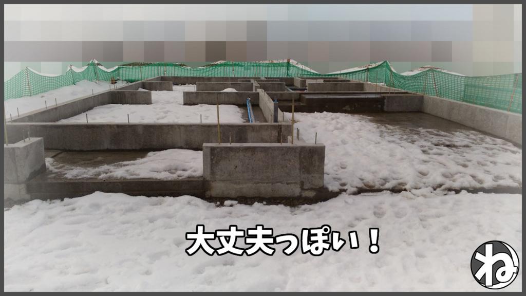 f:id:necozuki299:20180123124351j:plain