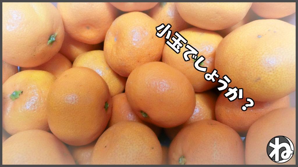 f:id:necozuki299:20180124203948j:plain