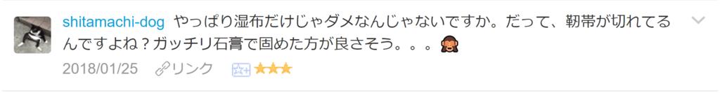 f:id:necozuki299:20180125202936p:plain