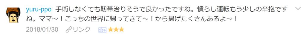 f:id:necozuki299:20180131010217p:plain