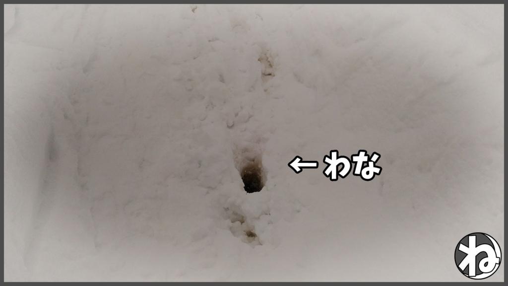 f:id:necozuki299:20180206174033j:plain